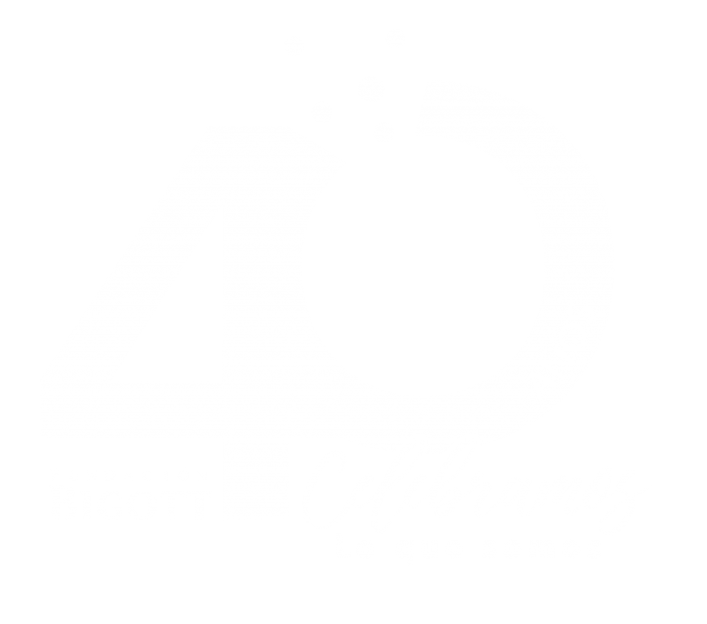 Logo en blanco 40 años Fundación Bigott
